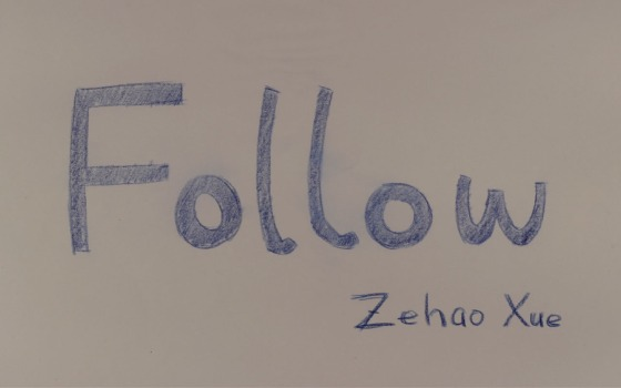 follow_poster