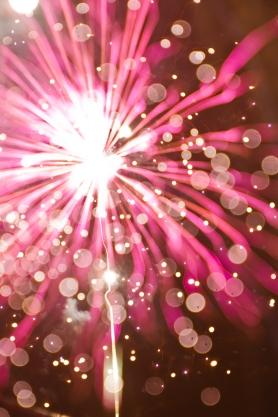 flowerlike fireworks
